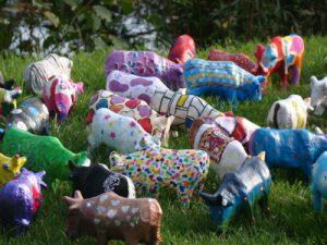 koeien schilderen, teamuitje,schilderworkshop,koeien schilderen, acrylverf, alle leeftijden,workshop, personeelsuitje, vrijgezellen, familiedag, bedrijfsuitje